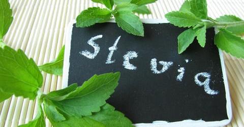 Bringt Stevia für Diabetiker die unbeschwerte Süße zurück?