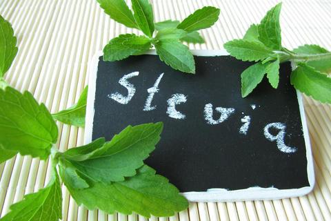 stevia diabetes bringt stevia f r diabetiker die unbeschwerte s e zur ck diabetesweb. Black Bedroom Furniture Sets. Home Design Ideas
