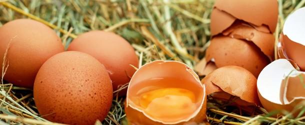 Der Verzehr von Eiern bringt wertvolle Nährwerte